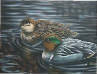 duck stamp entry green wing teals