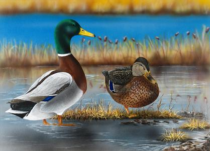 Landscape paintings, nature art, custom engraving, professional artist Georgette Kanach, state of maine duck stamp 2009